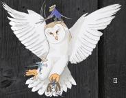 Basil and Barn Owl6