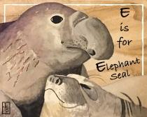 E-El seal