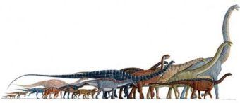sauropods-