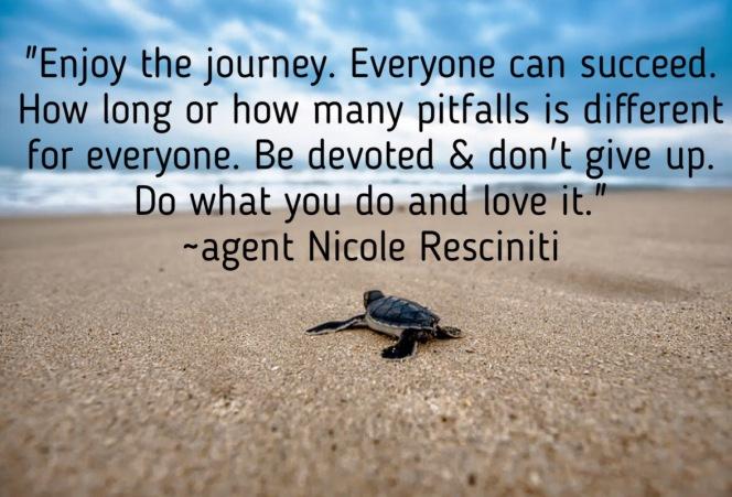 journey turtle