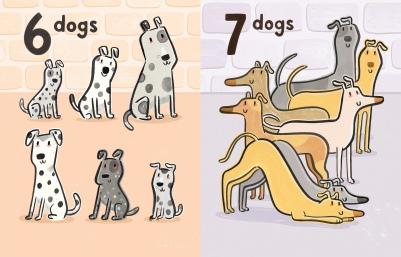 Q7Greyhounds Final