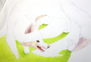 betton-process-fox-paint